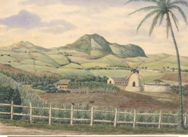 Plantagen Morning Star med bjergene på nordsiden af St. Croix i baggrunden.